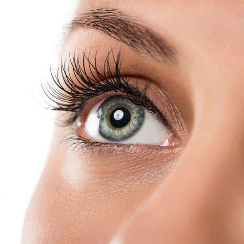 others eyelash tint2